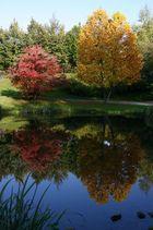 Farben des Herbstes ..