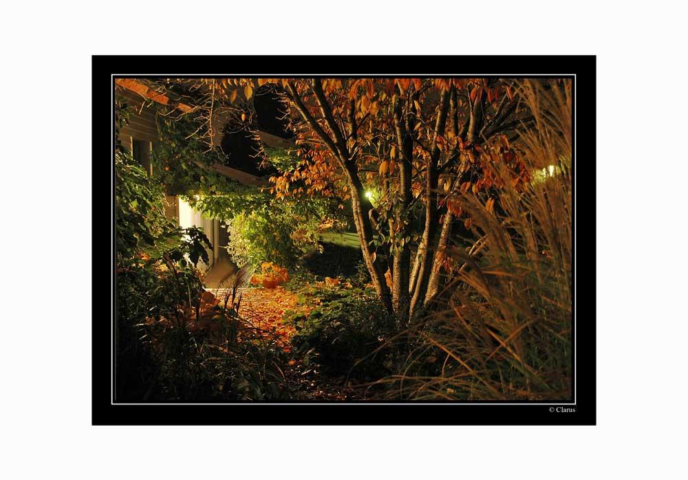 Farben einer Herbstnacht