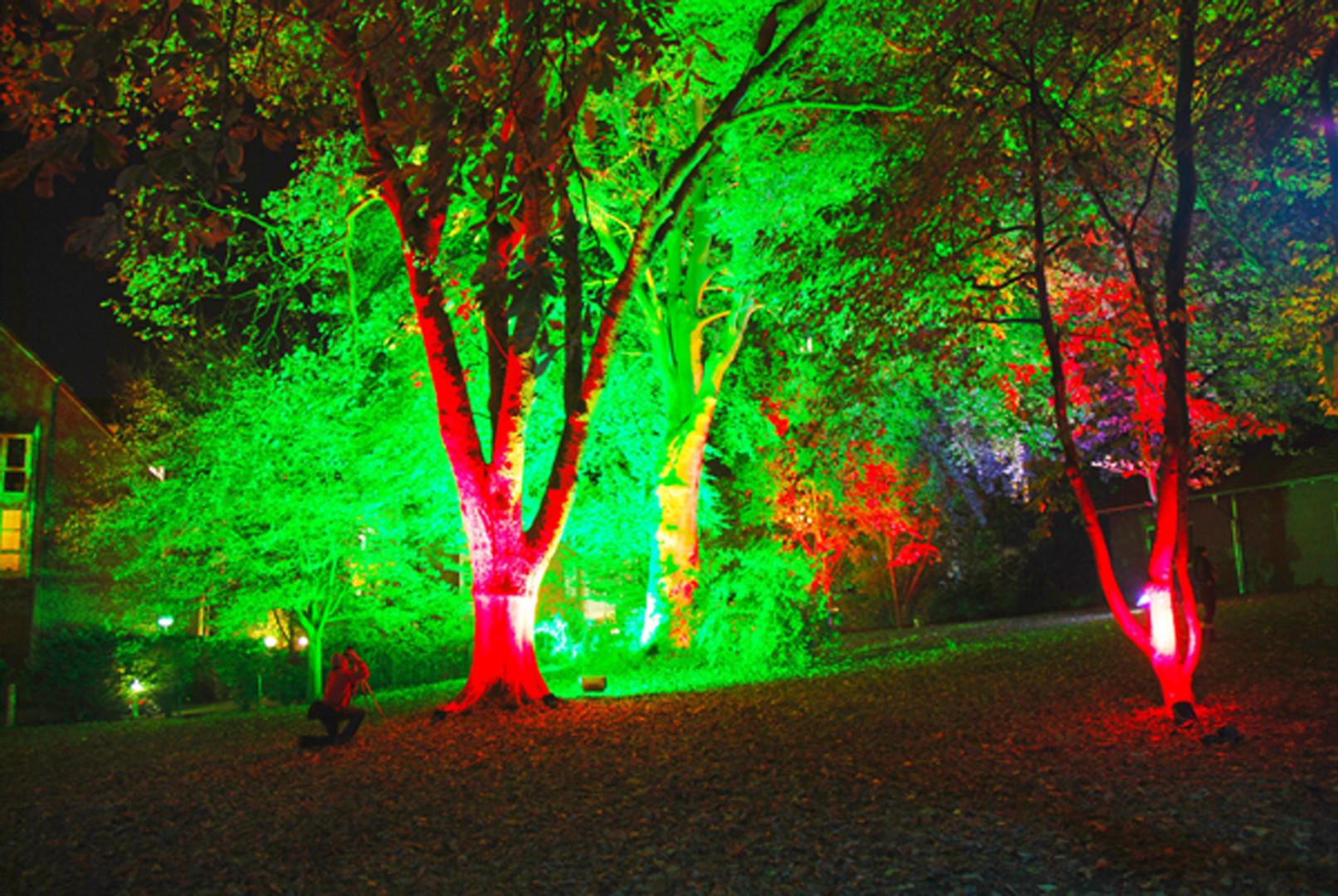 Farben Spiel bei RE. leuchtet