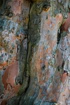 Farben und Strukturen #2