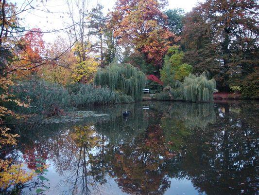 Farbenharmonie eines ganz normalen Herbsttages in Marburg