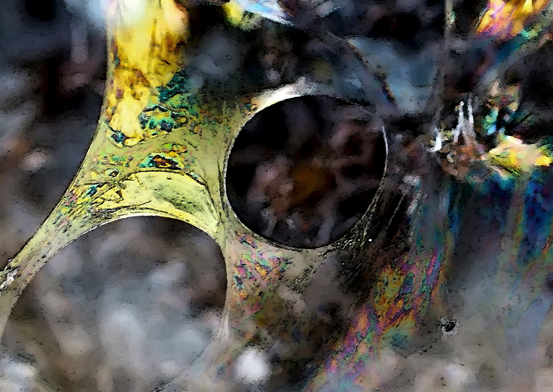 Farbenklänge im tiefen Wald!  -  Palette attrayante de nuances de couleurs dans la forêt...