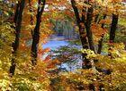 Farbenpracht im Gatineau-Nationalpark in Kanada