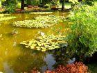 Farbenrausch im Parco Sigurta Giardino.