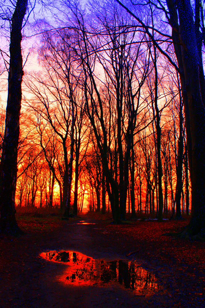 farbenreicher Sonnenuntergang