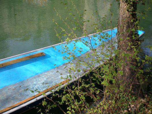 Farbenspiel an der Aare in Bern