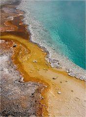 Farbenspiel der Bakterien
