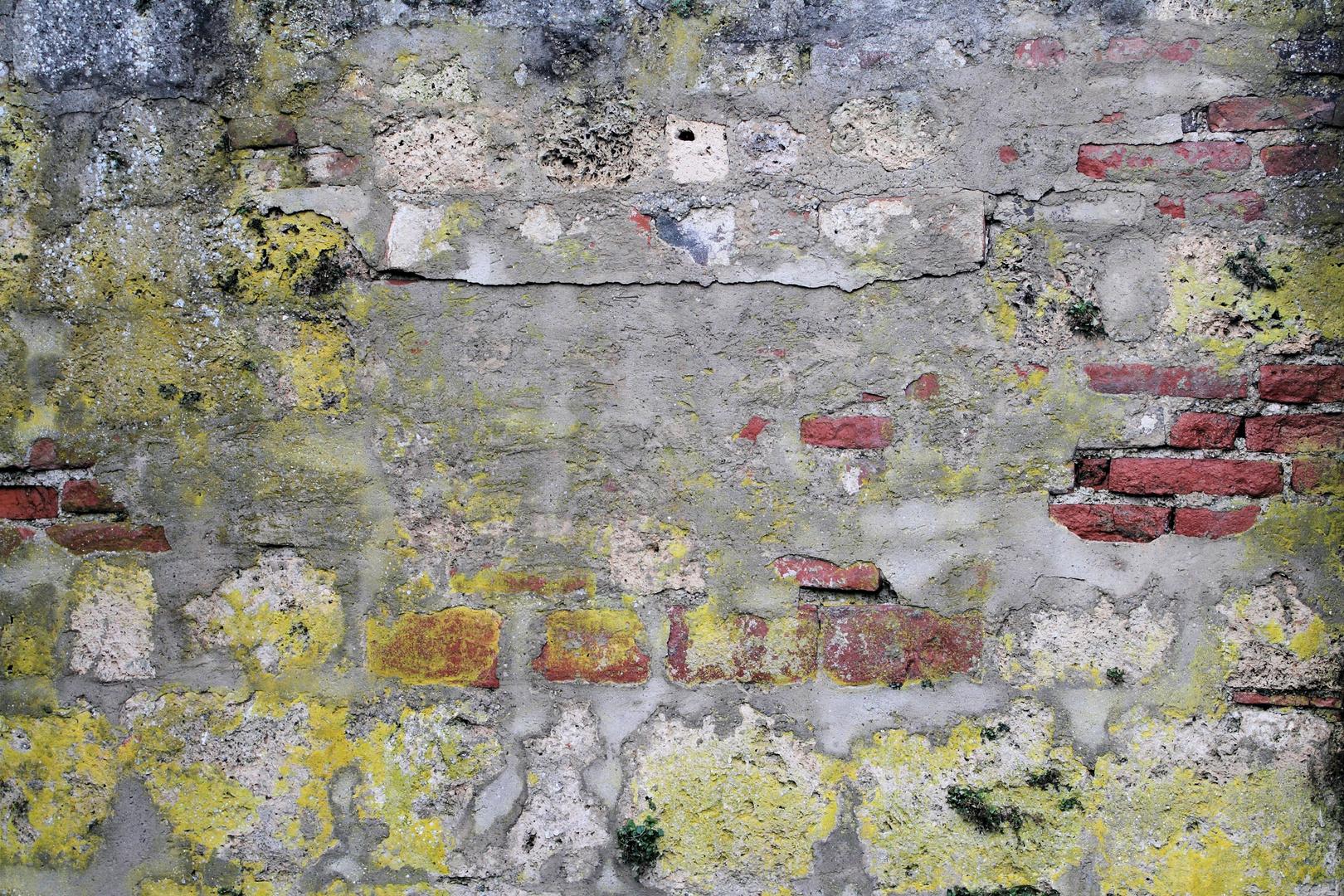 Farbenspiel einer alten Mauer
