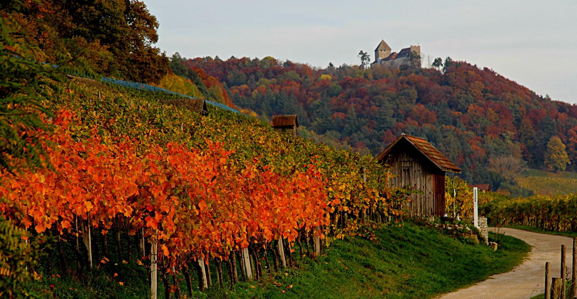 Farbenspiel mit Burg