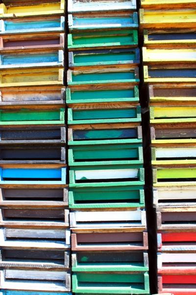 Farbenvielfalt.