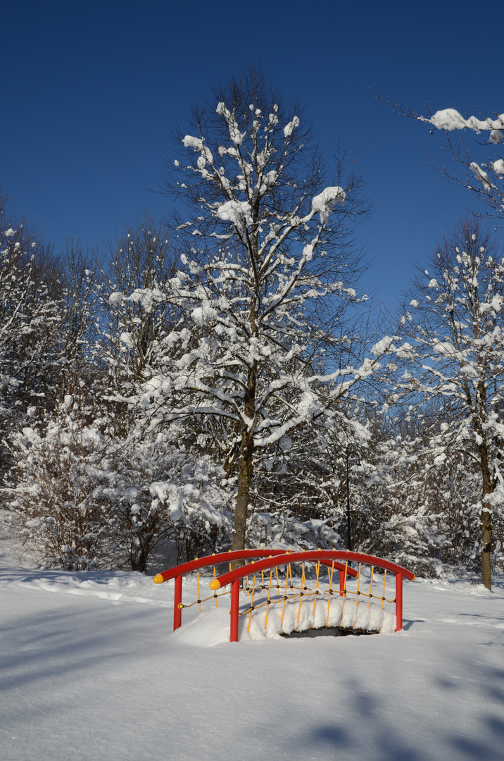 Farbklecks in der Winterlandschaft
