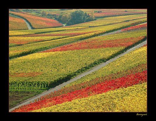 Farbpalette vom Maler Herbst...