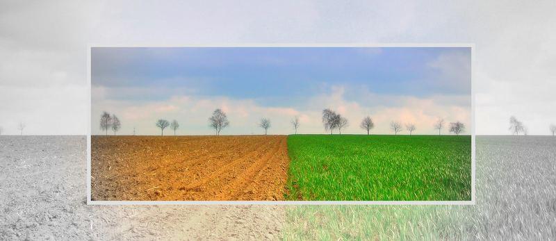 Farbpunkt    (2. Version)