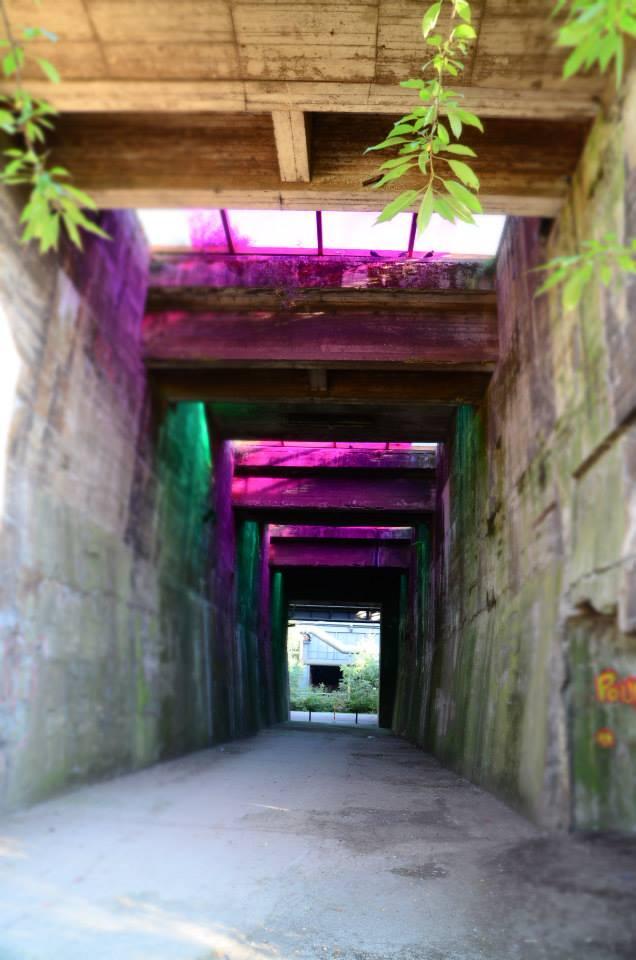 Farbspiel am Bunkerweg