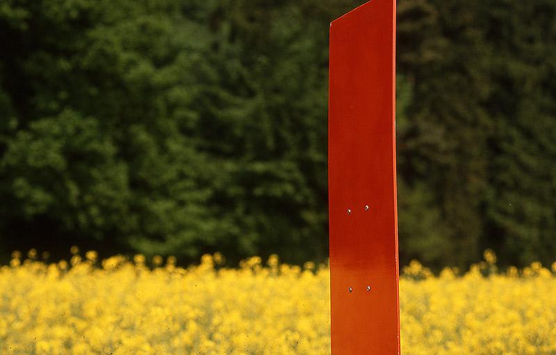 Farbspiel in der Natur