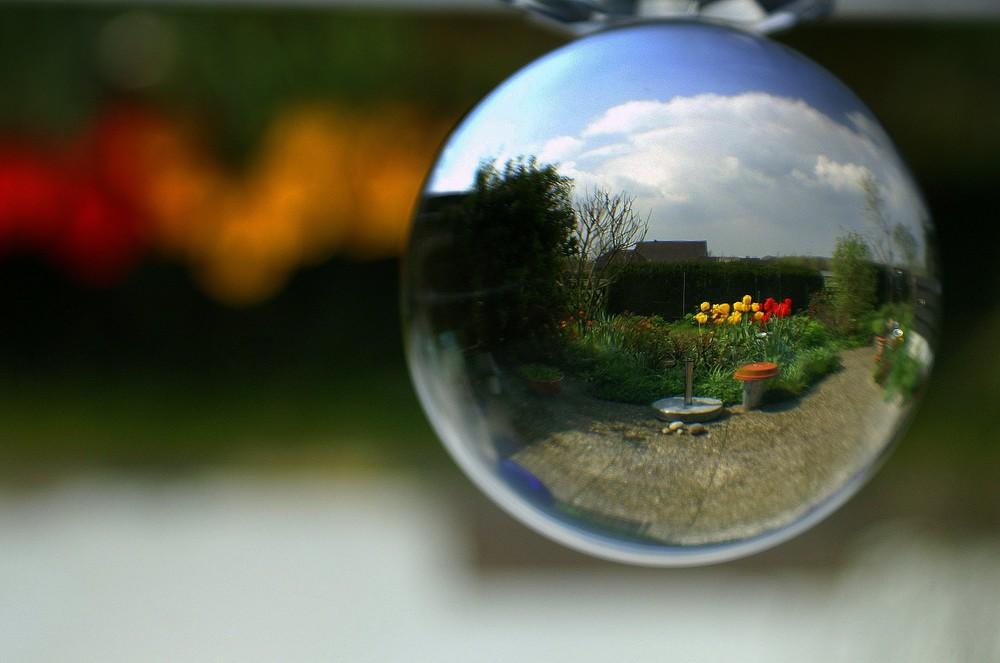 Farbtupfer im Kugelgarten