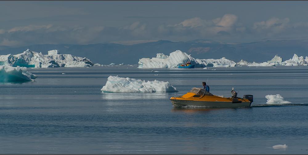 farbtupfer in den blauen arktischen gewässern