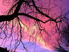 Farbwolken