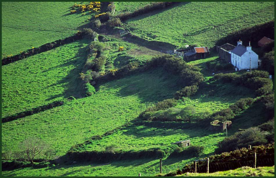 Farm auf Kerry