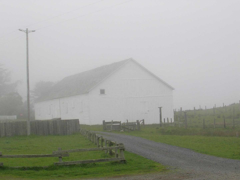 Farm III