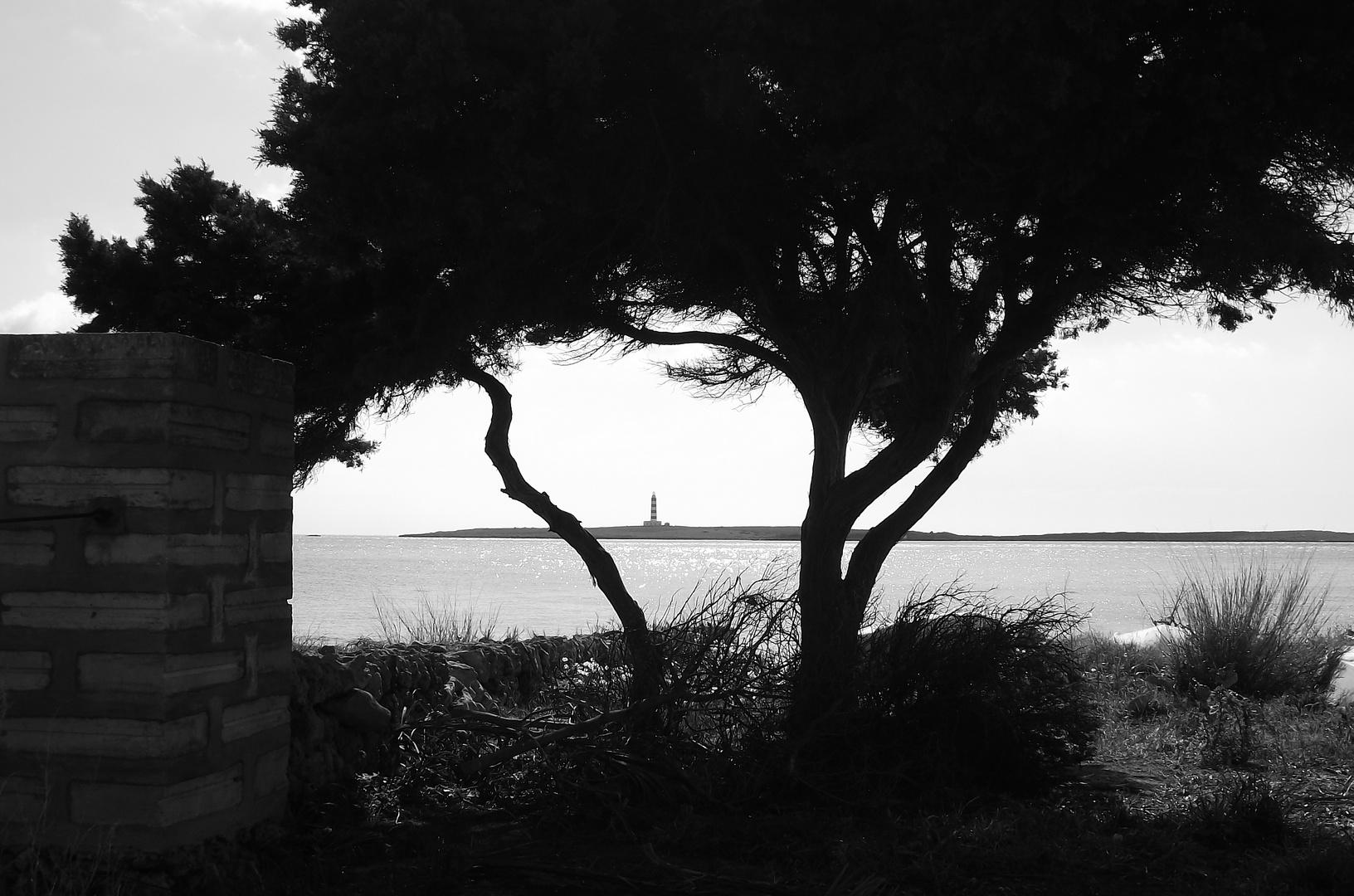 Faro entre los árboles