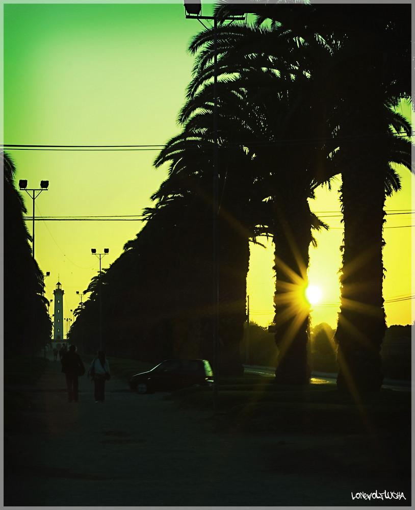 Faro Road