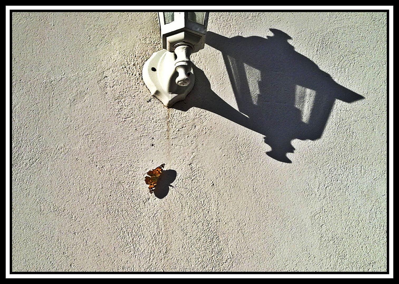 farol y mariposa