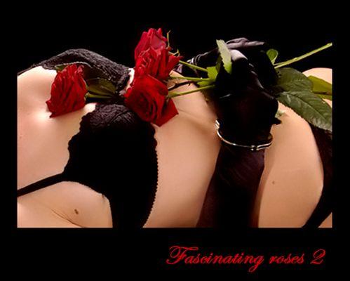 Fascinating roses 2
