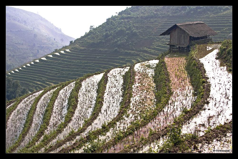 Fascinating Vietnam