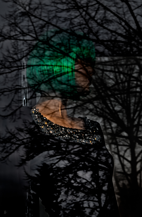 fashion in trees