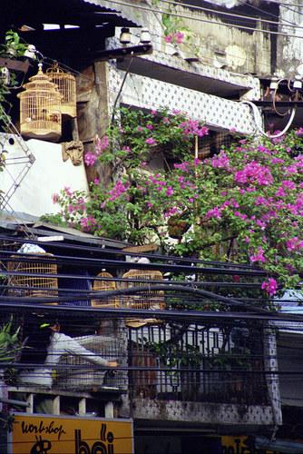 Fassade in Saigon 1