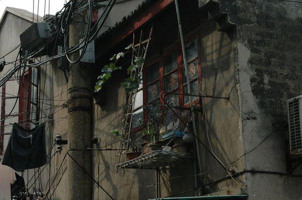Fassaden Schmuck