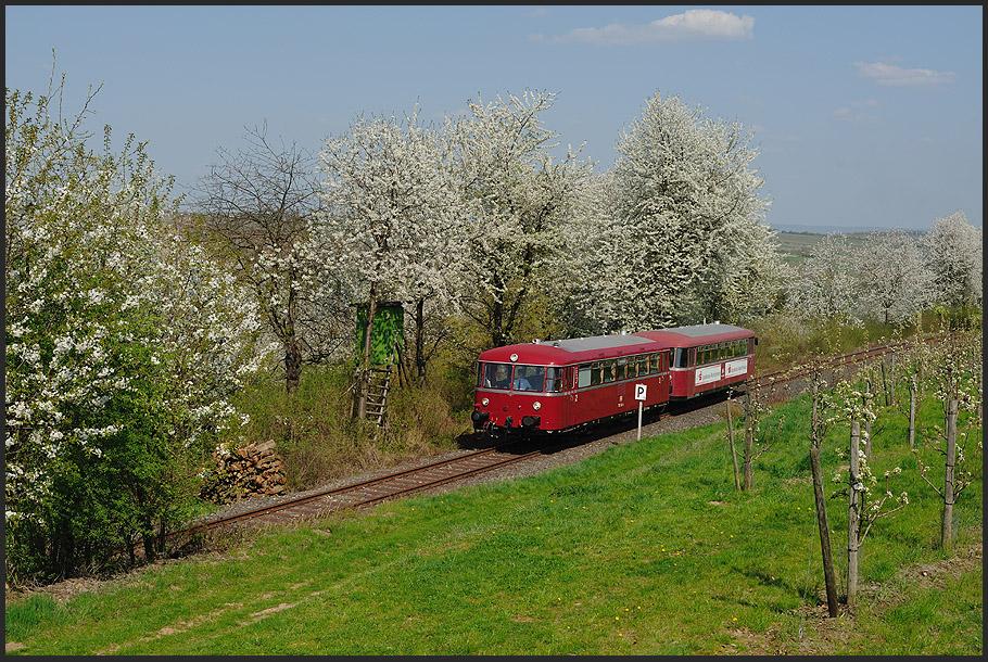 Fast wie früher, ein VT98 bei schönster Frühlingsblüte auf der Mainschleifenbahn