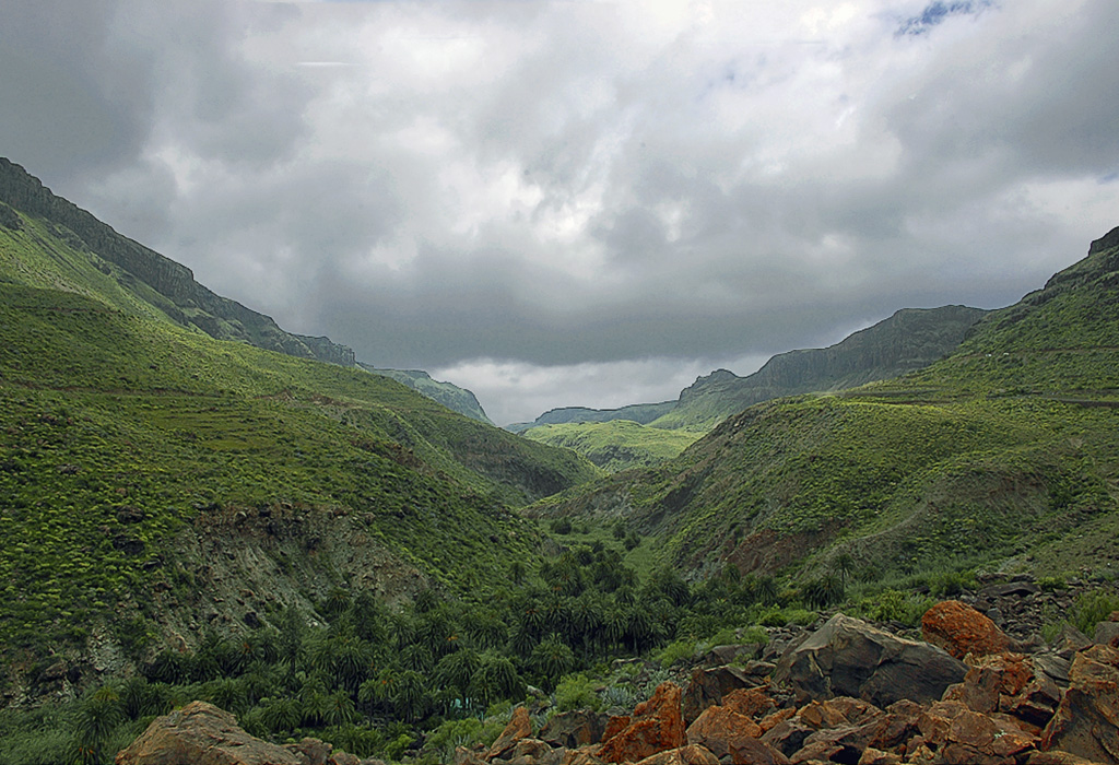 Fataga (G.Canaria )