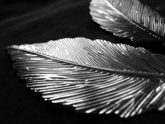 Fausses plumes