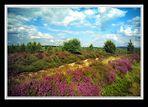 FB 199 Grampian Highlands # 02