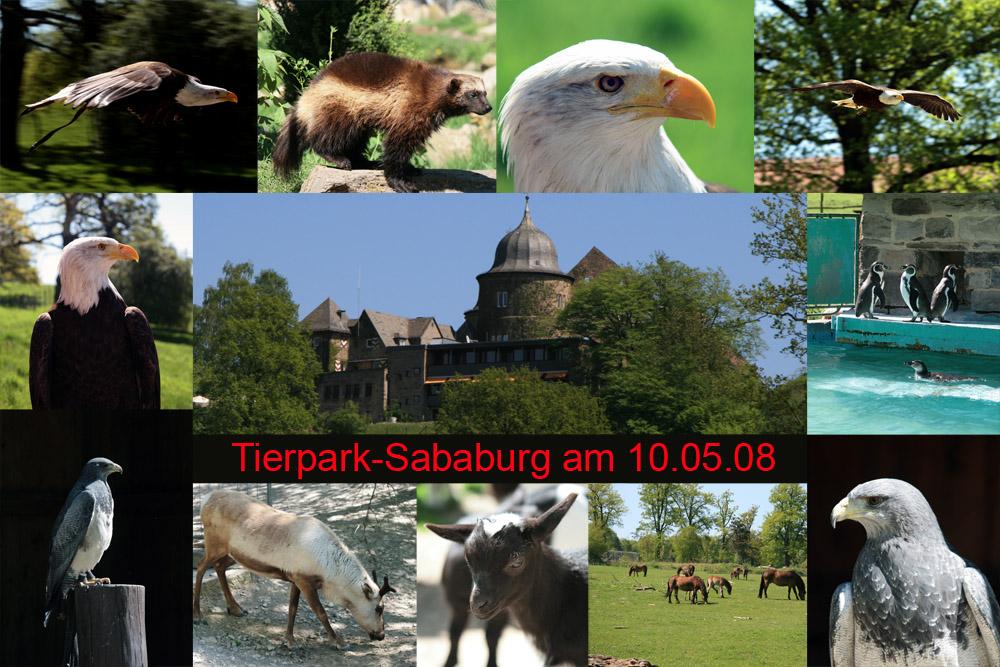 FC-User-Treffen Sababurg