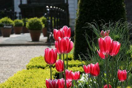 Garten- & Parklandschaften