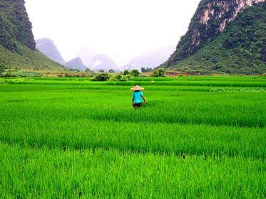 Guizhou Province (Guiyang)