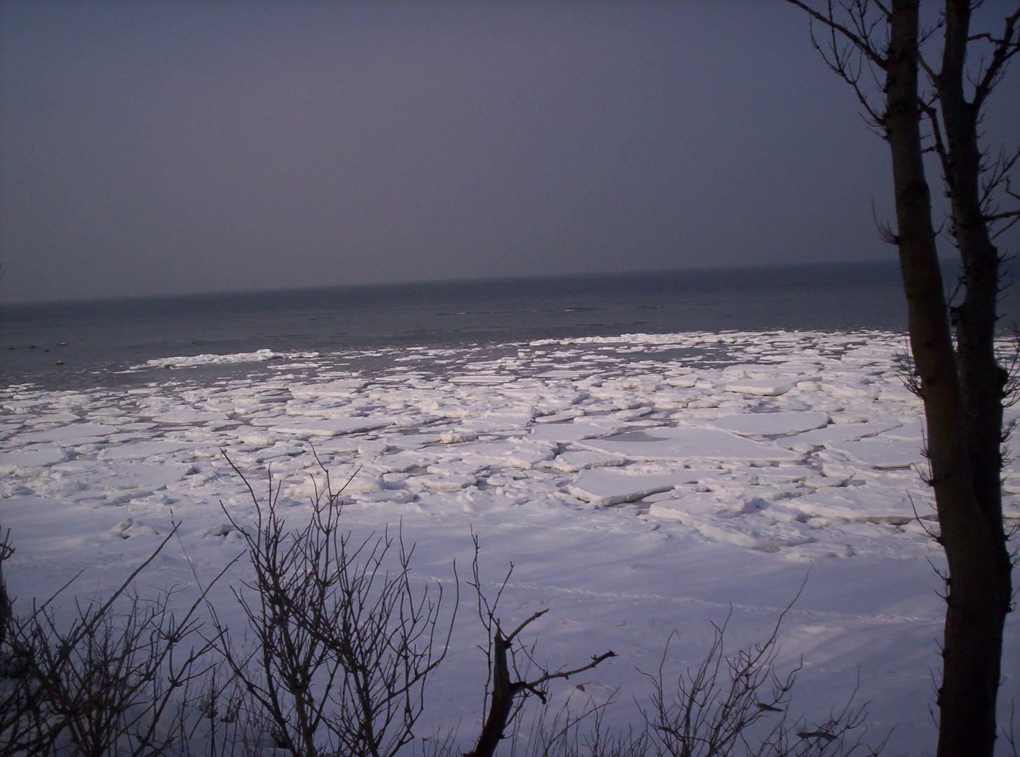 Februar 2010 auf der Insel Poel