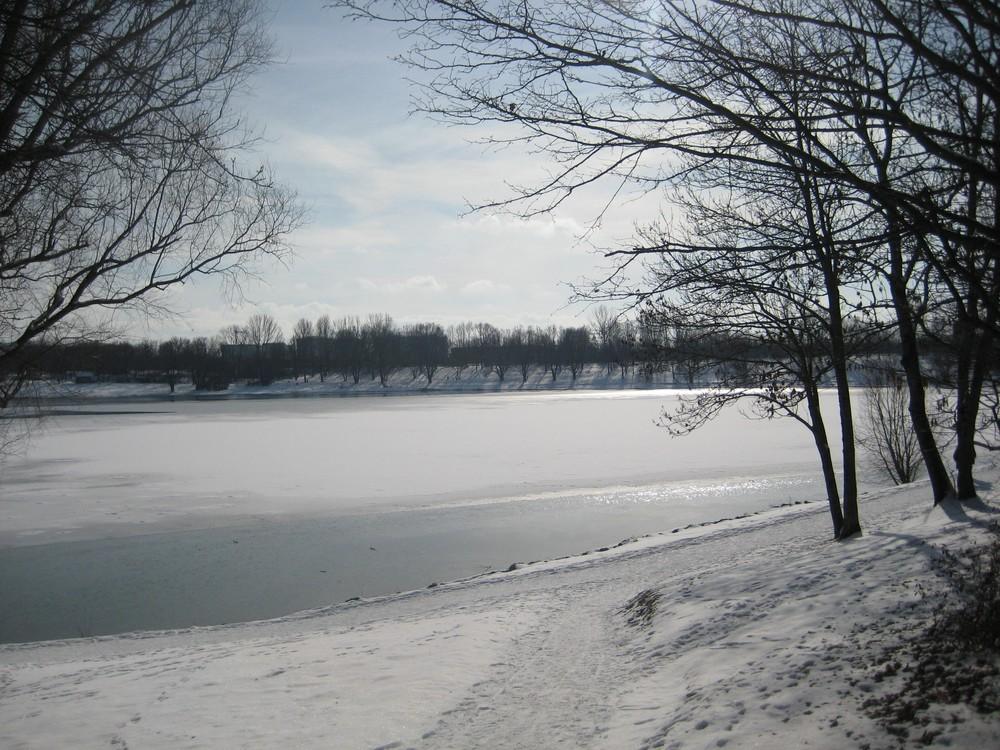 Februar am Heimstettener See