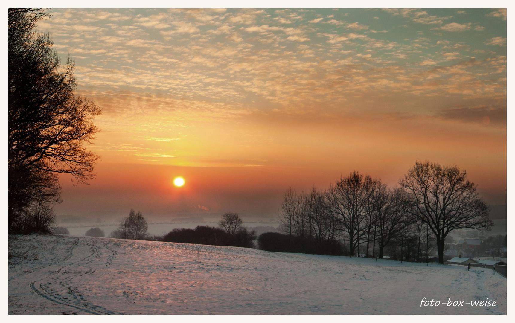Februarmorgen (3)