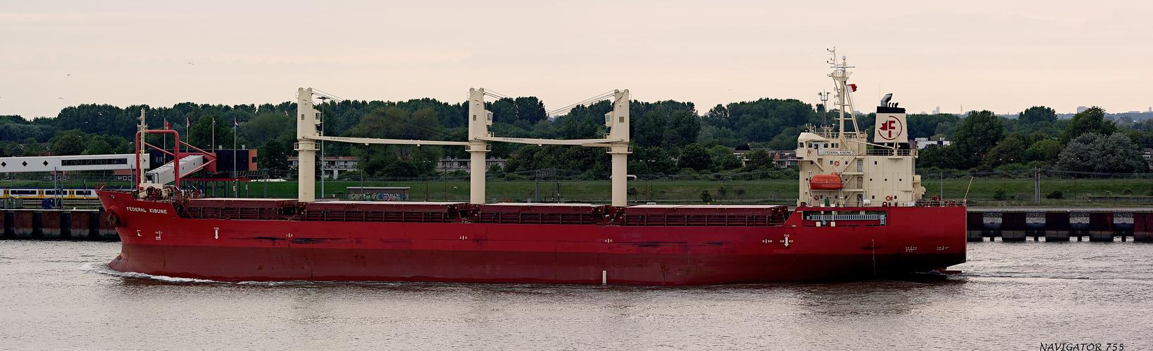 FEDERAL KIBUNE / Bulk Carrier