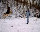 Fee beim Schneespringen