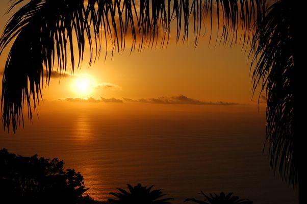 Feels like in paradise - Costa Rica macht's möglich