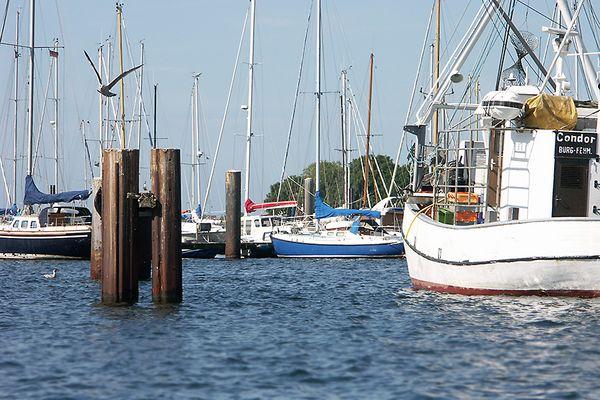Fehmarn Burg Hafen