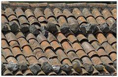 Fein aufgeschichtet... (Santa Maria, Azoren)