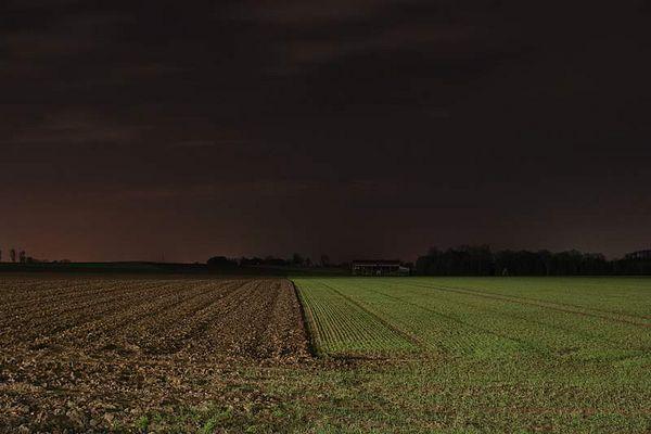 Feld bei Nacht