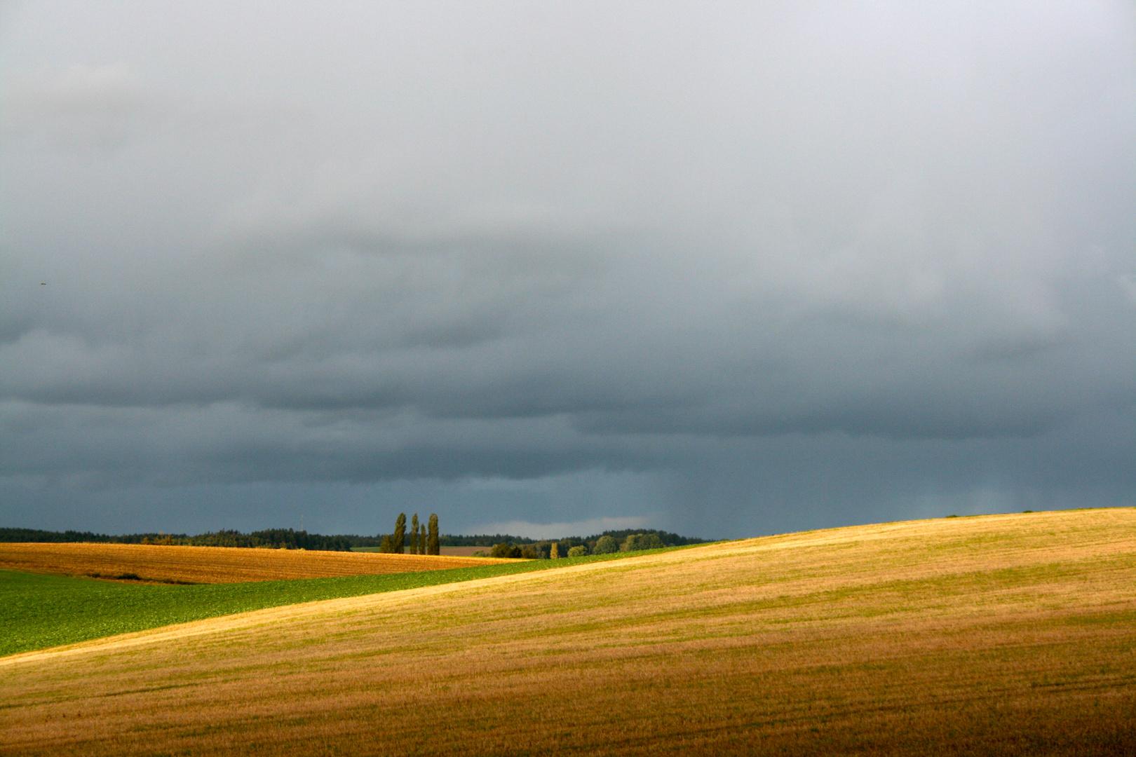Feld bei Oberzeitlbach