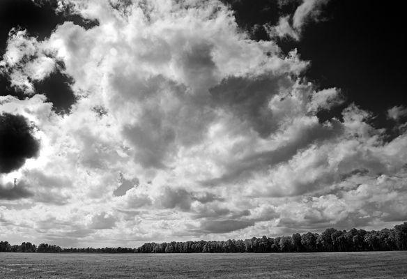 Feld bei Tüschendorf